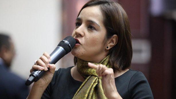 Diputada Karin Salanova
